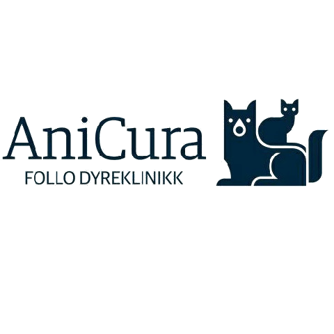 anicuraTrans1